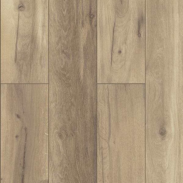 Laminátové podlahy 1538 DUB ALAMOS BINPRO-1538/0   Floor Experts