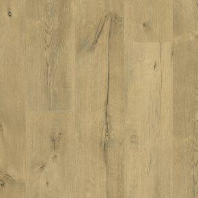 Vinylové podlahy 1142 DUB DETROIT WINPRO-1142/0 | Floor Experts
